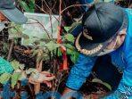 Pemkab Kutim Tanam 50 Pohon Saat Hari Lingkungan Hidup